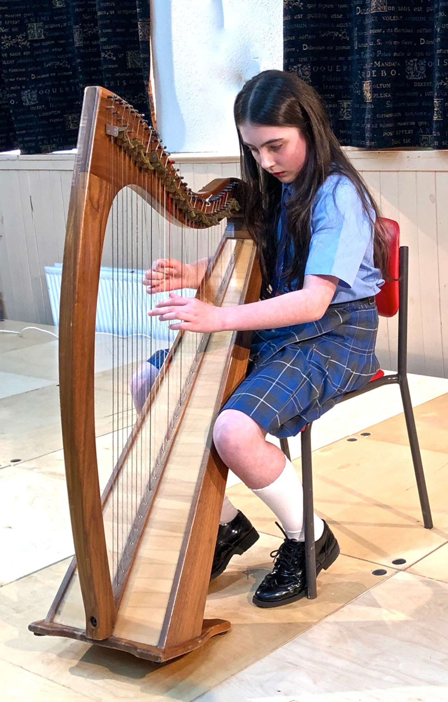 Young Harpist at Mayfest2019