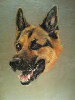 Painting of German Shepherd dog
